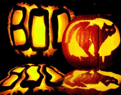 Rainier Veterinary Hospital Halloween Reminders